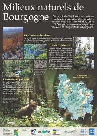 illustration-milieux-naturels-en-bourgogne-1-1502704720